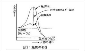 酵素の触媒としての働き